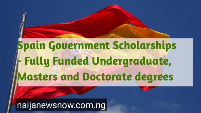 Spain government Scholarships