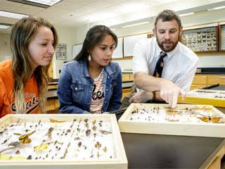 Entomology Schools to get into